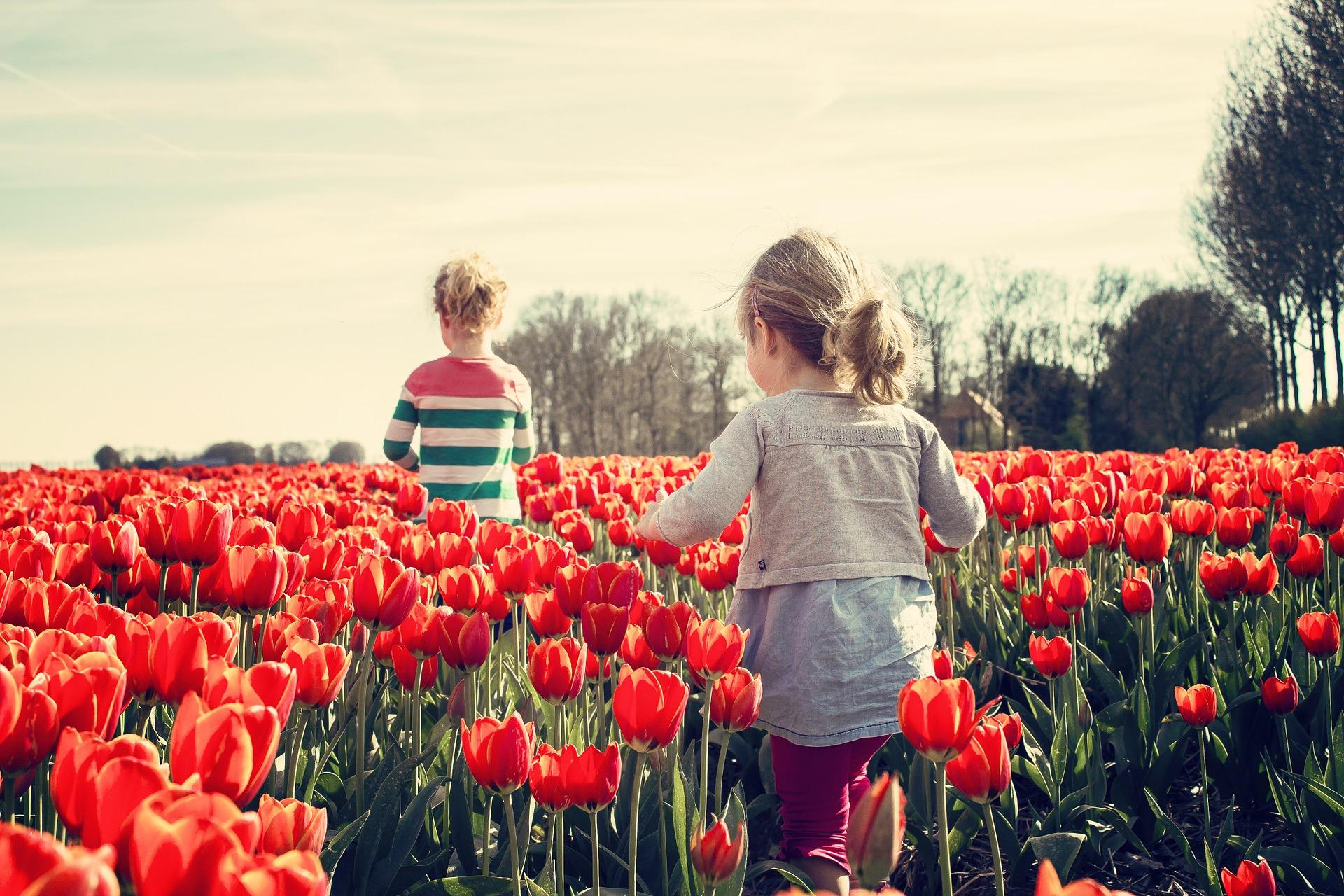 little girls in flower fields